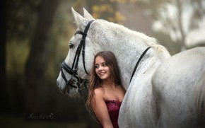 Picture girl, horse, horse