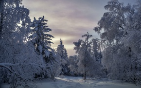 Picture winter, snow, national Park, Taganay, Black rock