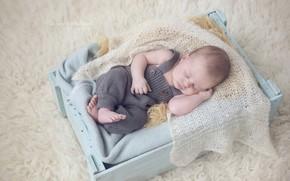 Picture child, sleep, fur, baby, boys, suit