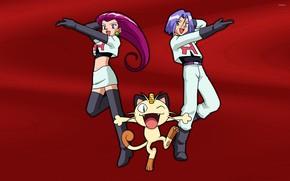Picture cat, girl, hair, girl, guy, cat, James, boy, Jesse, James, pokemon, pokemon, Jesse, Jess, Jessica, …