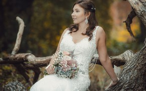 Picture love, holiday, dress, the bride, wedding