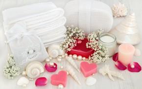 Picture flowers, soap, shell, flowers, bath, hearts, still life, petals, candle, spa, salt, seashells