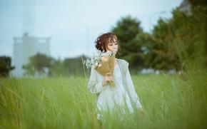 Picture grass, girl, bouquet, Asian