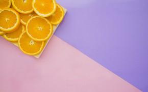 Picture purple, background, pink, oranges, citrus