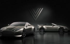 Picture Aston Martin, Roadster, Vantage, pair, V12, 2018, V600