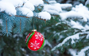 Picture snow, holiday, tree, ball, ball