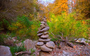 Picture Autumn, Forest, Stones, Fall, Autumn, Forest