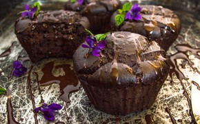 Picture cupcakes, violet, muffins