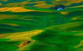 Picture grass, house, hills, field, USA, Washington