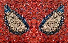 Picture eyes, comics, venom, hero, spider man, mask