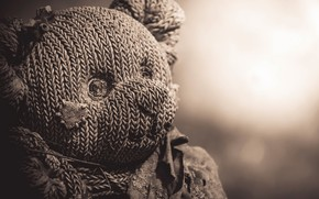 Picture background, toy, bear