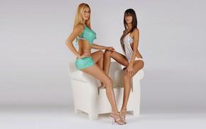 Picture chest, face, sexy, background, girls, chair, brunette, blonde, legs, sexy, model, beauty, waist, Tais Souza …