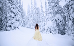 Picture cold, forest, girl, snow, dress, Lichon