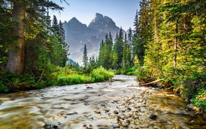 Picture Nature, Mountains, River, Forest