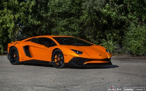 Picture Lamborghini, Black, Aventador, Vossen, Novitec, Gloss, NV-1