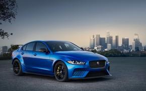 Picture Jaguar, Project
