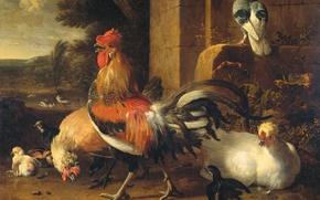 Picture animals, picture, cock, Melchior de Hondekuter, Barnyard