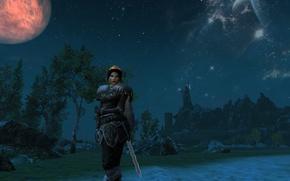 Picture Girl, Night, The Elder Scrolls 5 Skyrim, Nariva