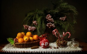 Wallpaper branches, berries, toy, new year, ball, Christmas, spruce, candy, Bank, vase, fruit, nuts, still life, ...