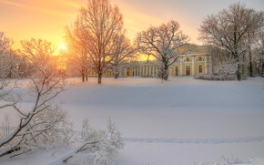 Wallpaper sunset, Russia, Alexander Palace, Tsarskoye Selo, trees, winter, Saint Petersburg, snow, Pushkin, traces