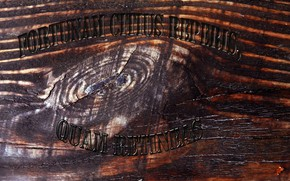 Picture tree, the inscription, Texture, Latin