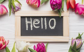Picture flowers, spring, colorful, tulips, pink, wood, pink, flowers, romantic, tulips, spring, hello