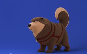 Picture dog, minimalism, Nikki, David Barrero