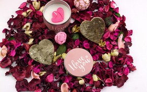 Picture love, holiday, candle, hearts, rose petals, Valentine's day