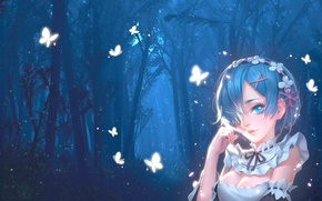 Picture forest, girl, night, butterfly, art