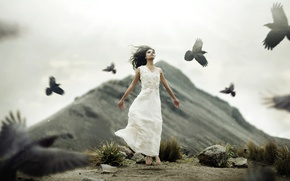 Wallpaper the situation, mood, girl, birds