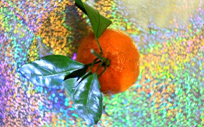 Picture orange, new year, bokeh, Mandarin