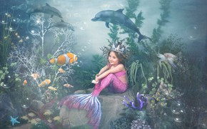 Picture fish, algae, turtle, corals, girl, dolphins, underwater world, the little mermaid
