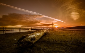 Picture sunset, shore, log