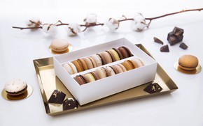 Picture chocolate, cotton, macaroon