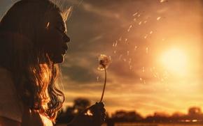 Picture the sun, mood, dandelion, girl