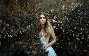 Picture girl, mood, dress, wreath, the bushes, Valentina Knight