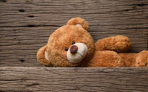 Wallpaper toy, bear, bear, wood, teddy bear, cute