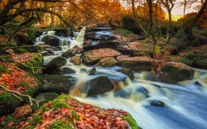 Picture autumn, leaves, trees, river, stones, France, waterfall, moss, cascade, France, Brittany, Brittany, Saint-Herbot, Breizh waterfalls