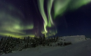 Picture winter, night, beauty, Northern lights