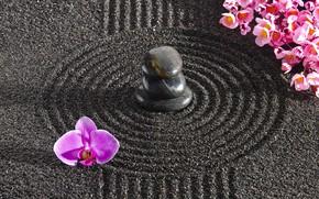 Picture energy, flowers, stone, Japan, garden, Japan, stone, Zen, energy, garden, philosophy, Zen, sand monk
