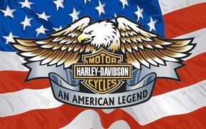 Wallpaper American flag, Harley Davidson., Brand, Eagle