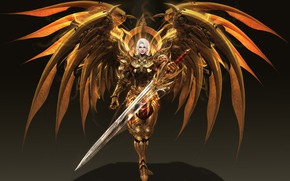 Picture wings, warrior, fantasy, art, level, LVL, Solar interference signal, costume design, Era of angels