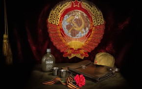 Wallpaper pussy, Victory Day, carnation, The coat of arms of the USSR, May 9, tablet, flower, ...