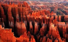 Wallpaper canyon, rocks, Red City, dawn