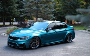 Picture BMW, Blue, Trees, F80, Sight