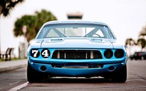 Picture Dodge Challenger, race, 1973, blue car