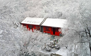 Picture Beijing, Badaling, trees, frost, winter, snow, China