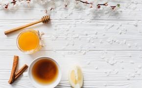 Picture Flowers, Lemon, Branches, Petals, Honey, Tea