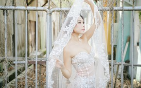 Picture style, model, the fence, Asian, the bride, veil