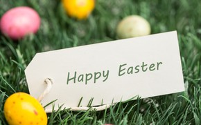 Picture Grass, Easter, Eggs, Holiday, Postcard